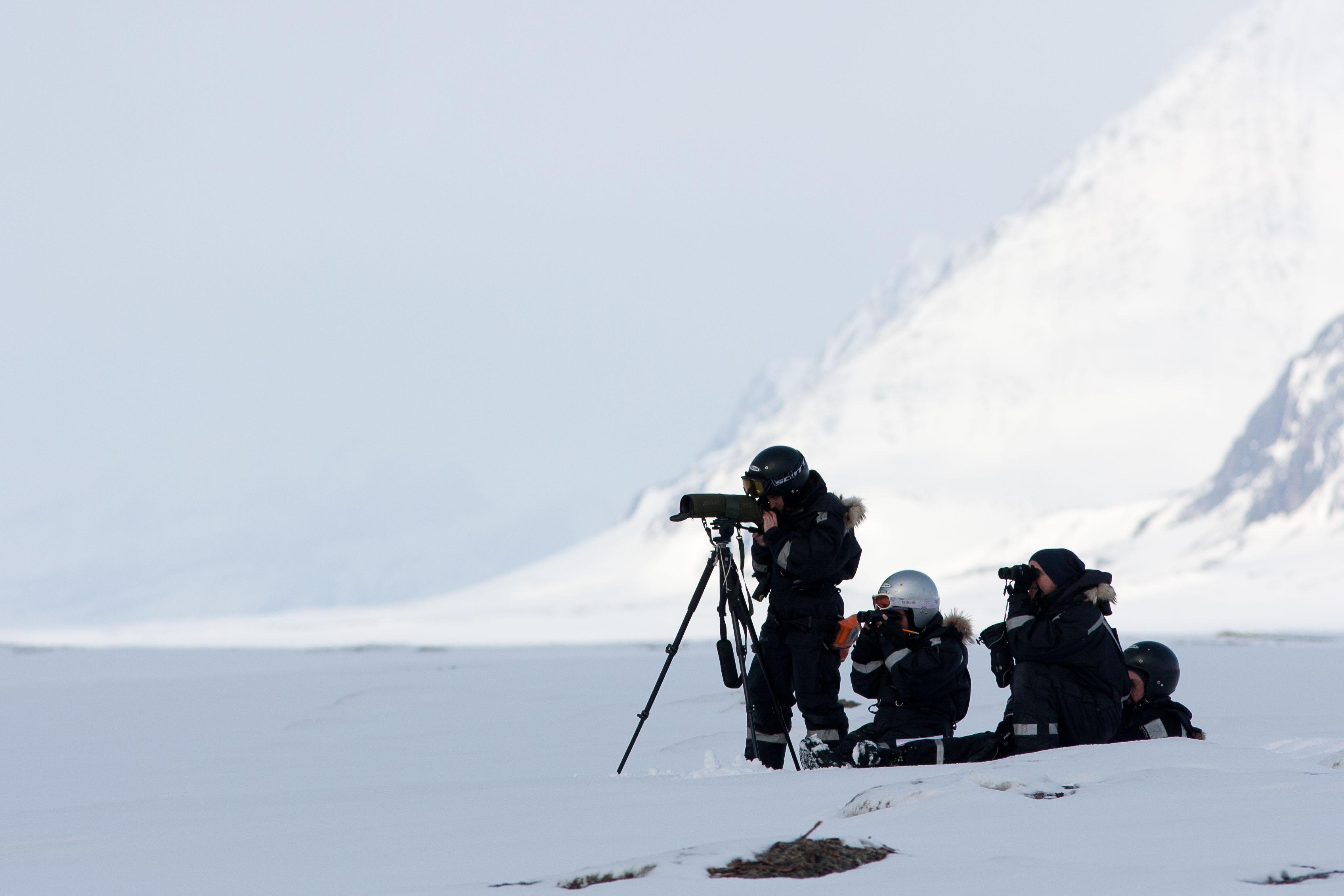 Photo: Øystein Varpe