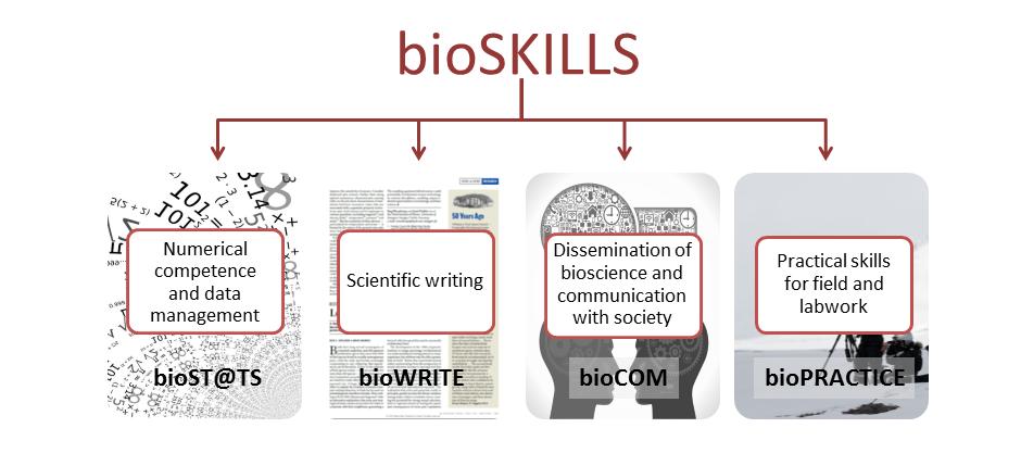 bioskills-cut